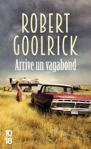 Arrive un vagabond - Robert GOOLRICK